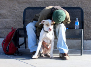 discrimination agreement, emotional support animals
